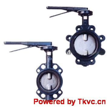 Butterfly Valves Without Pin
